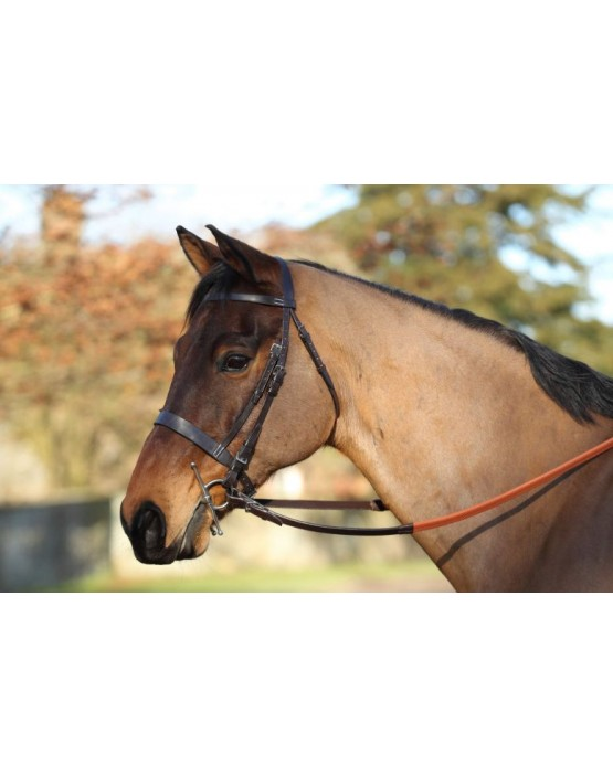 EJ Wicks 5* Exercise Bridle