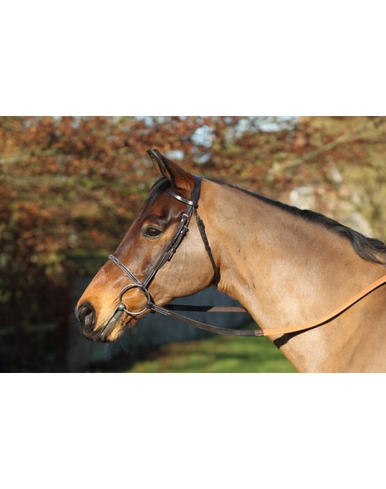 EJ Wicks 5* Race Bridle
