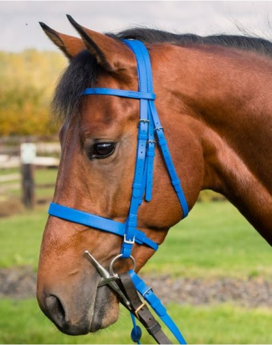 Zilco Epsom Bridle with Cavesson
