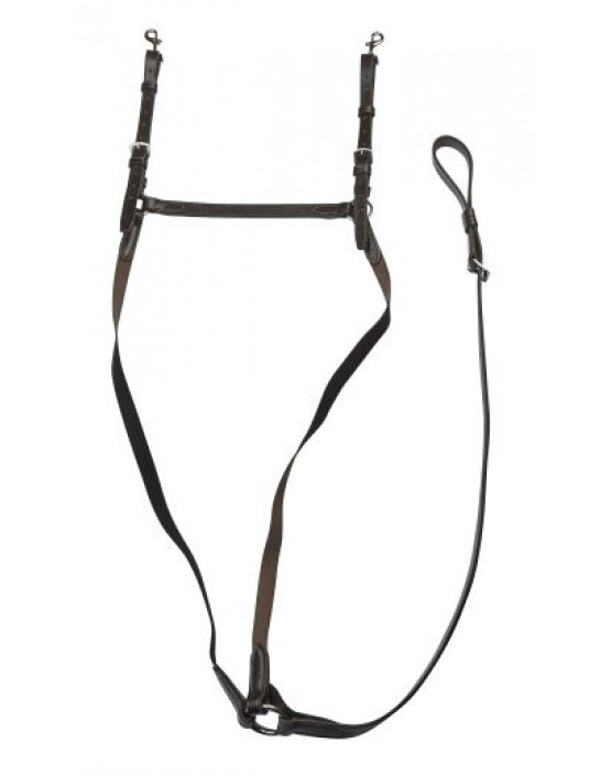 EJ Wicks 5* Leather and Elastic Breastplate