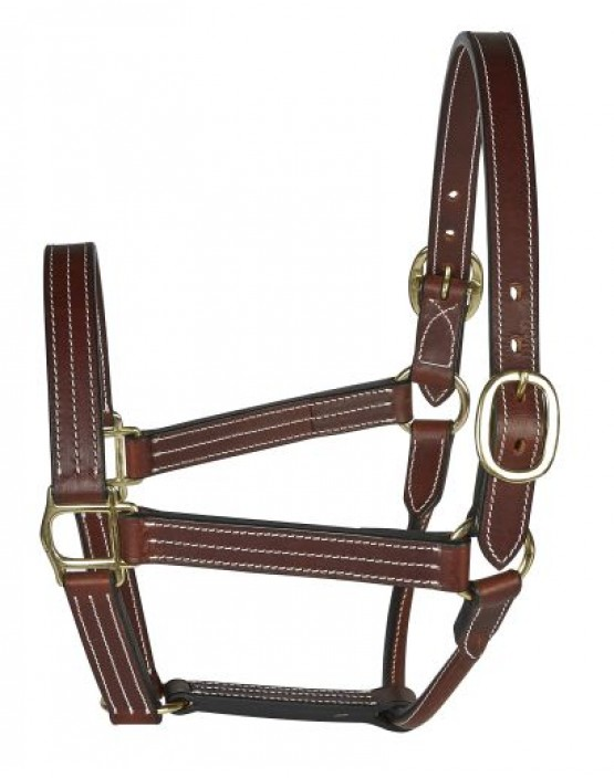 EJ Wicks American Style Leather Headcollar