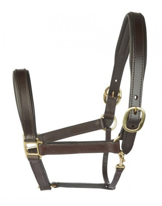 EJ Wicks Padded Leather Headcollar