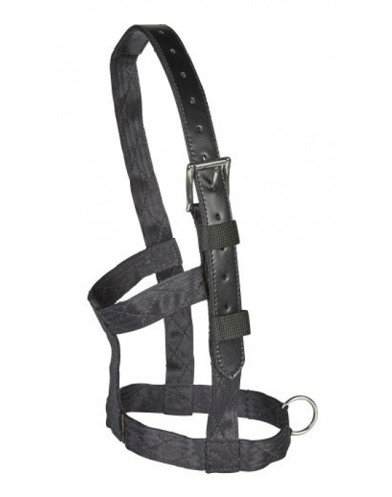 EJ Wicks Recovery Headcollar