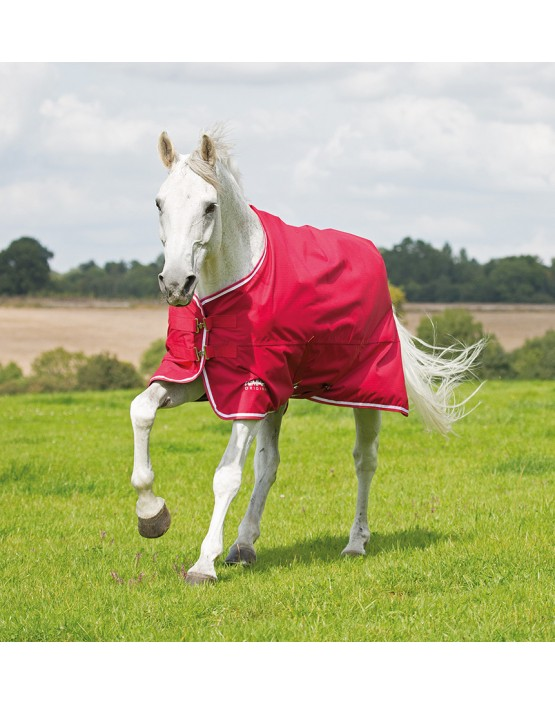 Shires Tempest Original Air Motion Turnout